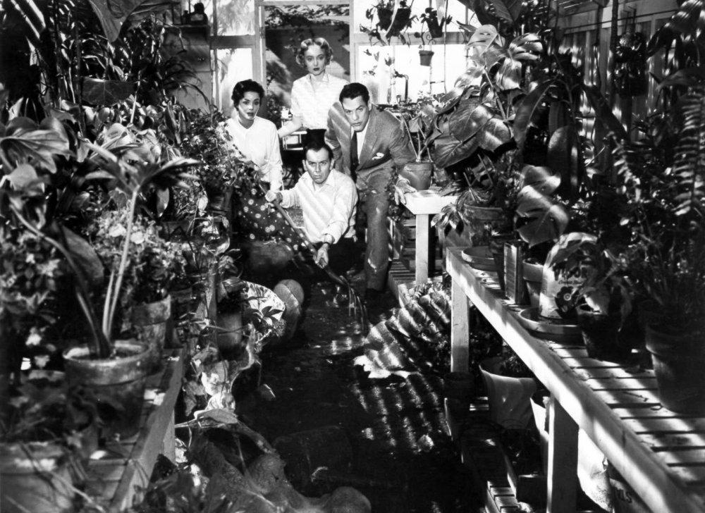 invasion-of-the-body-snatchers-1956-005-greenhouse-scene